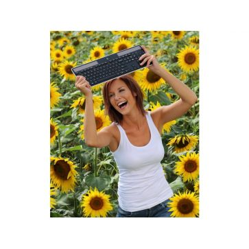 Logitech Tastatur K750 Solar